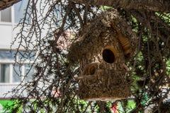 Pajarera de madera en un árbol en el bosque y el parque Fotos de archivo