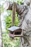 Pajarera de madera vieja clavada al árbol Imagen de archivo libre de regalías