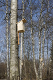 Pajarera en árbol Fotos de archivo