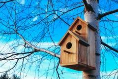 Pajarera en el árbol de abedul, fondo del cielo azul Nidal en un t Imagen de archivo