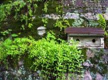 Pajarera en la repisa rocosa en jardín Fotografía de archivo libre de regalías