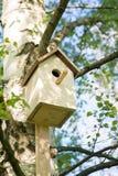 Pajarera en un árbol de abedul, hecho a mano outdoor Imagen de archivo libre de regalías