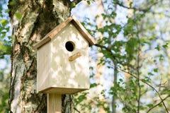 Pajarera en un árbol de abedul, hecho a mano outdoor Fotografía de archivo libre de regalías