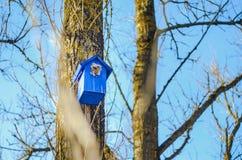 Pajarera en un árbol en el parque Fotografía de archivo libre de regalías