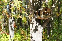 Pajarera en un árbol en un bosque Fotografía de archivo