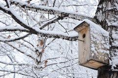Pajarera en un árbol nevoso Imagenes de archivo