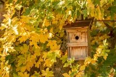 Pajarera y hojas de otoño coloridas Fotos de archivo