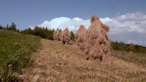 Pajares tradicionales en un pueblo de monta?a, pajar en campo de hierba hayfield pajares en un peque?o campo cerca del metrajes