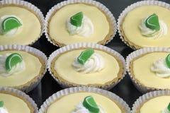 Pajcitron Curd Tarts för nyckel- limefrukt royaltyfria bilder