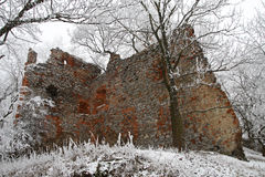 Pajstun - l'hiver Photos stock