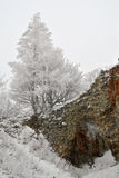 Pajstun - l'hiver Photo libre de droits