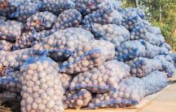 Pak aardappels Royalty-vrije Stock Afbeelding