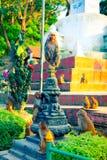 Pak apen in Swayambhunath Complex in Katmandu royalty-vrije stock foto