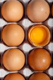 Pak bruine kippeneieren in kartoncontainer Één ei is gebroken royalty-vrije stock foto
