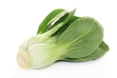 Pak choi. Fresh green pak choi on a white background Royalty Free Stock Images