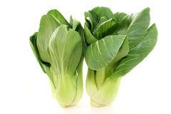 Pak choi Stock Photo