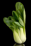Pak choi on black Stock Photos