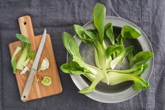 Pak Choi Royalty Free Stock Images