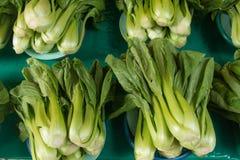 Pak choi. On fresh market Royalty Free Stock Images