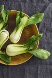 Pak Choi Royalty Free Stock Photos