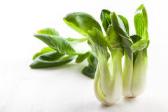 Pak Choi on wooden table Stock Image