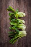 Pak Choi on wooden table Stock Photos