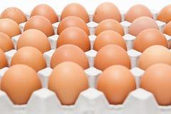 Pak 30 eieren Stock Foto's