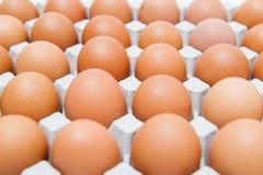 Pak 30 eieren Stock Afbeelding