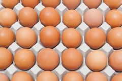 Pak 30 eieren Royalty-vrije Stock Foto