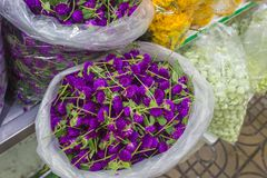 Pak Khlong Flower Market in Bangkok. Thailand Stock Images