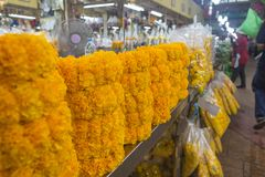 Pak Khlong Flower Market in Bangkok. Thailand Royalty Free Stock Photos