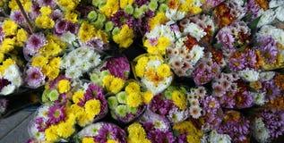 Pak Khlong Talat flower market Royalty Free Stock Image