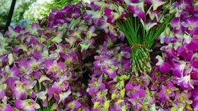 Pak Khlong Talat flower market Royalty Free Stock Photos