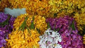 Pak Khlong Talat flower market Royalty Free Stock Photography