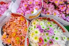Pak Khlong Talat Royalty Free Stock Photography