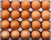 Pak van twintig bruine kippeneieren in kartoncontainer stock foto