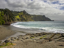 Pakari Coast near Goat Island, Northland New Zealand Royalty Free Stock Image