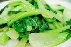 pakchoi кухни капусты китайское Стоковая Фотография RF