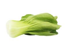 Pakchoi cabbage Stock Photos