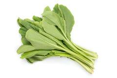Pakchoi, Chinese cabbage on background Royalty Free Stock Image