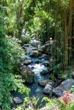 Pakerisan Riverlandscape in de tempel van Gunung Kawi Royalty-vrije Stock Afbeelding