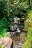 Pakerisan Riverlandscape in de tempel van Gunung Kawi Stock Afbeeldingen
