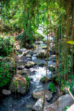 Pakerisan Riverlandscape no templo de Gunung Kawi Foto de Stock