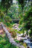 Pakerisan Riverlandscape in Tempel Gunung Kawi Lizenzfreies Stockfoto