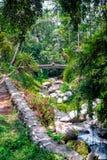 Pakerisan Riverlandscape in tempio di Gunung Kawi Fotografia Stock Libera da Diritti
