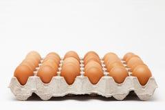 Paketera av ägg Royaltyfri Bild