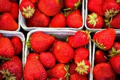 Paketerar finns med röda jordgubbar royaltyfri fotografi