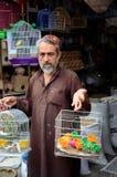 Pakistańscy mężczyzna bubli zwierzęcia domowego ptaki przy imperatorową Wprowadzać na rynek bazar Karachi Pakistan Zdjęcie Royalty Free