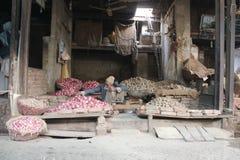 Pakistański jarzynowy sprzedawca Fotografia Royalty Free