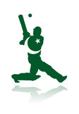 Pakistan cricket player in action. Vector illustration of cricket athlete of pakistan, while putting the ball with bat, isolated and with national flag colors Stock Image